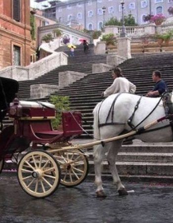 ROMANTIC HORSE CARRIAGE RIDE AROUND ROME